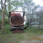 1 arbre mort déraciné par le camion